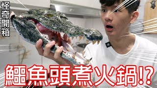 【尊】買了一顆鱷魚頭來煮火鍋!?