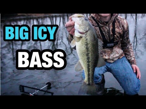 FISHING for ICE BASS using LIVE BAIT!!!