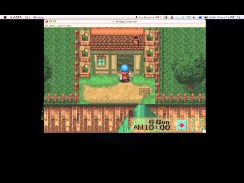Harvest moon friend of mineral town - Mountain Cottage,City Cottage & Beach House