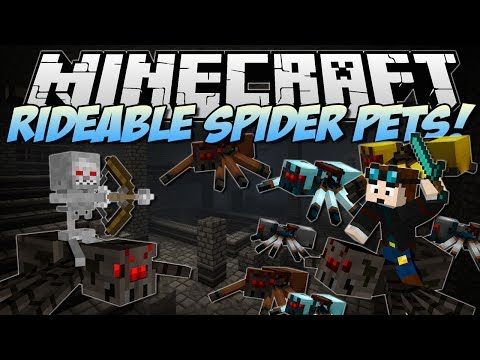 Minecraft | RIDEABLE PET SPIDERS MOD! (Tame Them, Ride Them & More!) | Mod Showcase