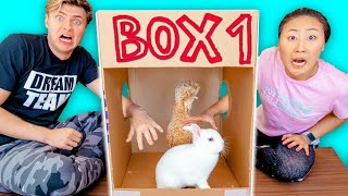 Download WHAT'S IN THE BOX CHALLENGE with LIVE ANIMALS!! Video