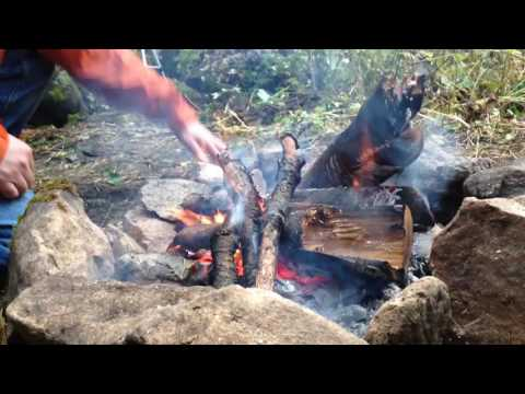 Quick and easy campfire meals: Roasted smoked sausage and vegetables