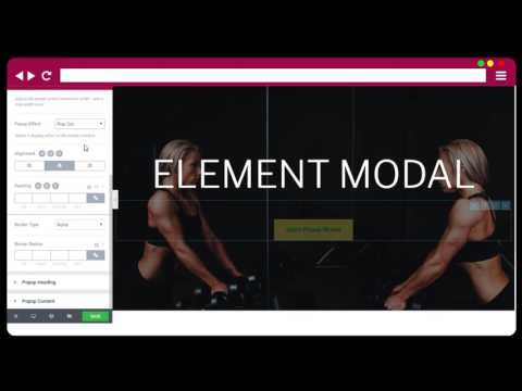 Introduction   Modal Element of Element Theme