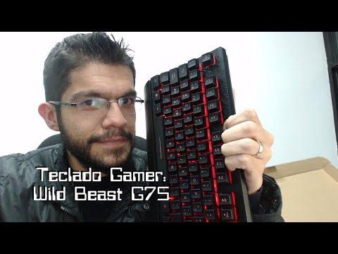Teclado Gamer Eagle Warrior Wild Beast G75 Retroiluminado