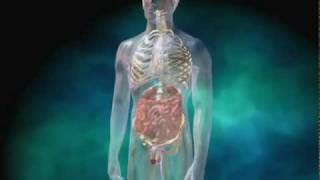 Prostate Biopsy -BEWARE