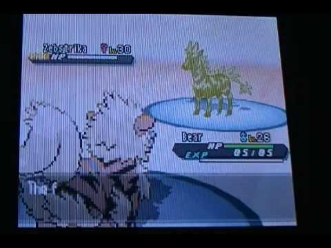 Pokemon Black 2: How to Beat Elesa