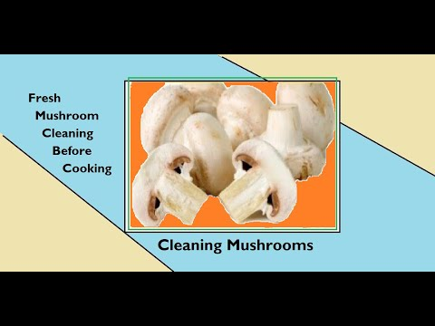 clean fresh mushroom before cooking || Cleaning Mushrooms || Mushroom Washing by click madhu