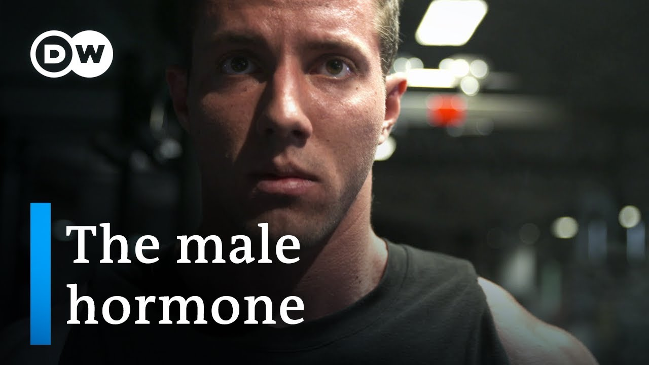 Testosterone — new discoveries about the male hormone   DW Documentary