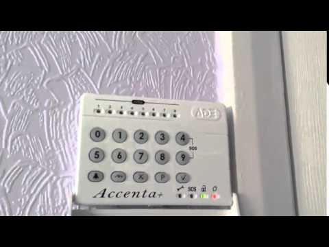Burglar Alarm || Ade accenta features