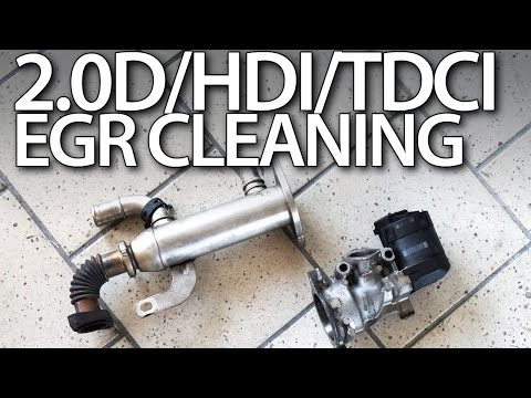 2.0HDi 2.0TDCi 2.0D EGR valve cleaning