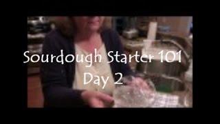 Jill 4 Today S Sourdough Starter 101 Day 2