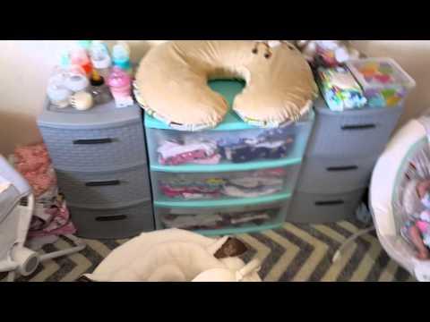 Nursery Tour! Dumbo Theme! Reborn Baby Dolls! Nlovewithreborns2011!