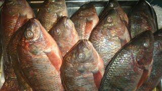 السمك المشوي بطريقه سهله وسريعه مع صدفه جاد
