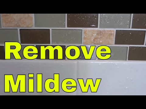 How To Remove Mildew From Grout EASILY
