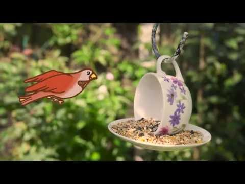 Garden Hacks: How to make a bird feeder