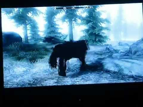 Playing as Shadowmere in Skyrim