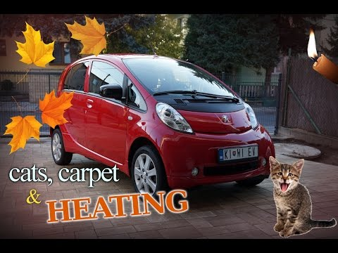 Cats, carpet, and the cold: I try out a bunch of ways to heat the car without using electricity