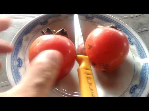 How many seeds in persimmon fruit