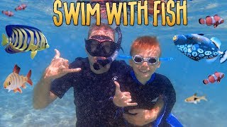 Swimming with Thousands Of Fish in Hawaii || Mommy Monday