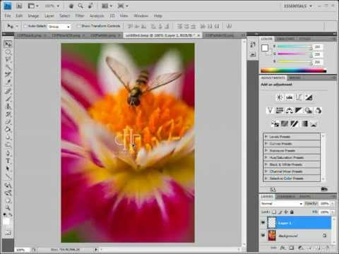 How To Custom Watermark Your Photos in Photoshop and Corel