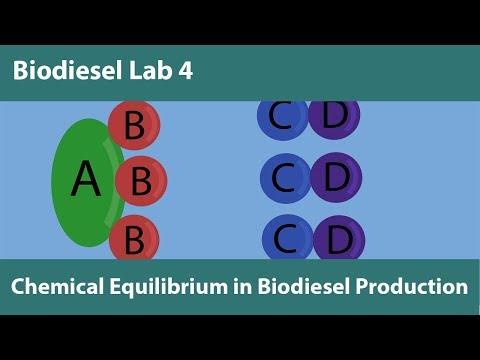 Lab 4-Chemical Equilibrium in Biodiesel Production