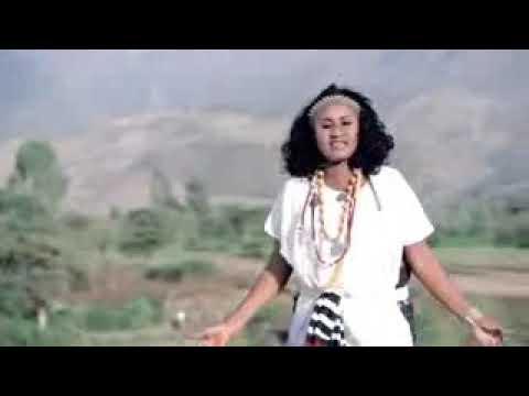 Sirba Aada Wollo Haaraa 2019 MP3, Video MP4 & 3GP - WapIndia