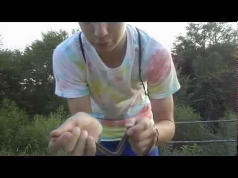 JTSC Catching Garter snakes at the Creek
