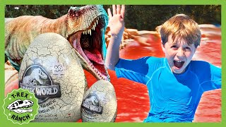 The Pool is Lava! Watch Out! Jurassic Dinosaur toy Adventure by T-Rex Ranch