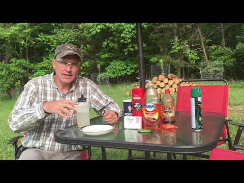 How To Repel Gnats The Best Easy Ways