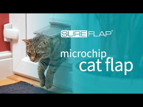 SureFlap Microchip Cat Flap & DualScan - Door Installation