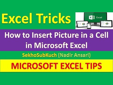 How to Insert Picture in a Cell in Microsoft Excel : Excel Tips and Tricks | Urdu / Hindi