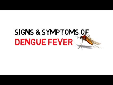 DENGUE SYMPTOMS