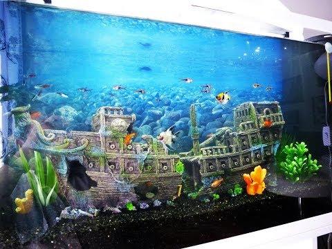 All Decoration To Need To Build Aquarium PART ###3### Build aquarium