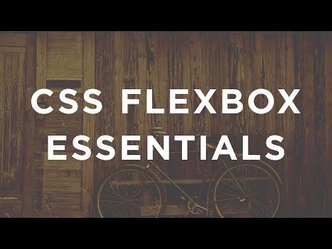 CSS FlexBox Essentials