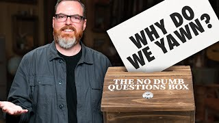 Science Mike Answers Our Questions