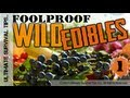 New Foolproof Wild Edible Plants 1 Easily Identify Common Wi