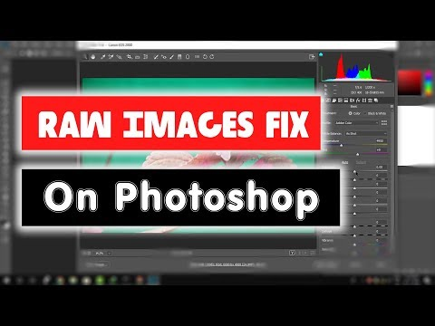 [Solved] How to Fix Can't Open Raw Images in Photoshop, Lightroom and Adobe Bridge