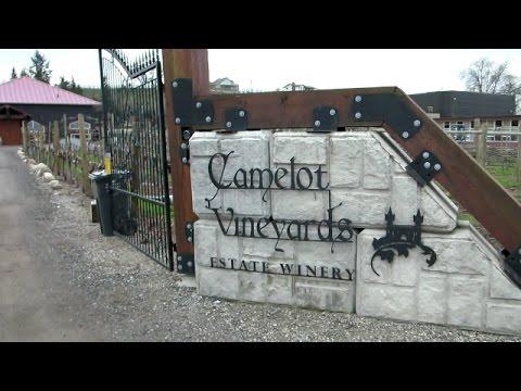 Okanagan Wineries: Camelot Vineyards