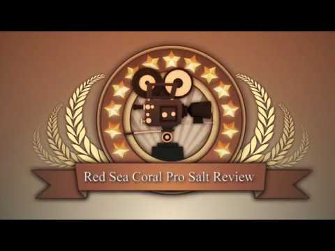 Red Sea Coral Pro Salt Review