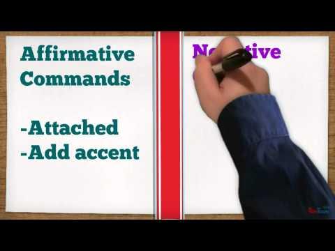 Affirmative and Negative Ud. Commands