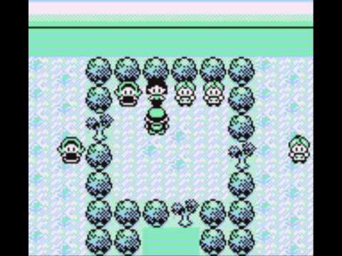 Pokemon Blue Walkthrough Part 28: Gym Leader #4 Erika
