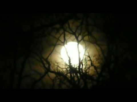 Full Moon Rising!!