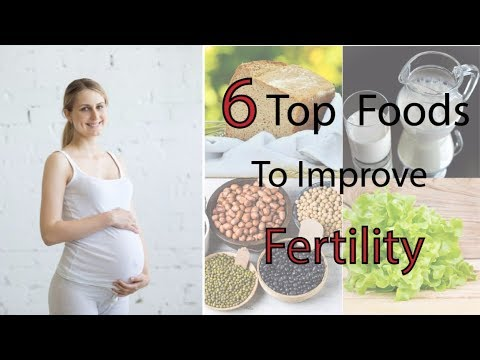 Foods to Improve Fertility - Fertility foods for women | How to increase fertility - health care
