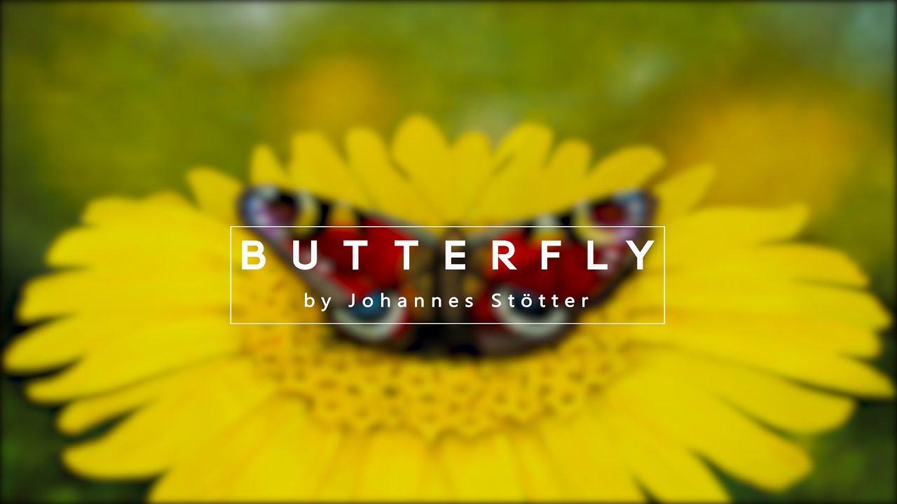 Bodypaint Illusion - Butterfly by Johannes Stötter