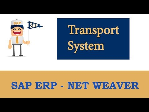 ERP SAP Basis - Net Weaver | Basics of Change and Transport System – Part 1 |