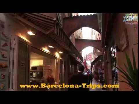 BARCELONA TRIPS: MONACO TRIP WITH NICE & CANNES