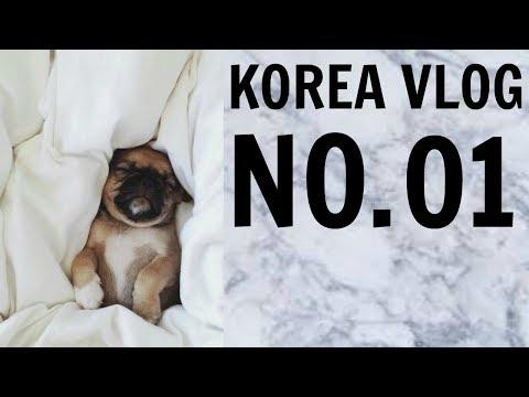 KOREA VLOG NO.O1