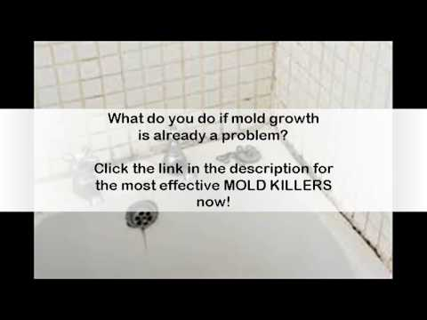 how to get rid of black mold in bathroom