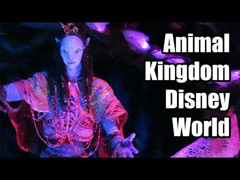 A Wild Day at Animal Kingdom at Walt Disney World - Avatar World of Pandora! Oct 2017 Day 4 Part 1