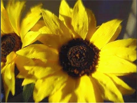 How to make Paper Flowers Sunflower / Helianthus annuus(Flower # 49)